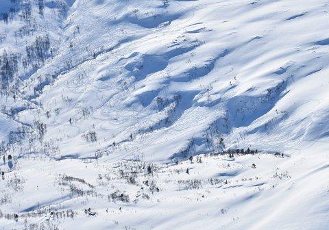 Rindal 20200321.  Spor etter ulovlig kjøring med snøskuter i Rindal kommune i Trøndelag sist vinter. Foto: Statens Naturoppsyn / NTB scanpix