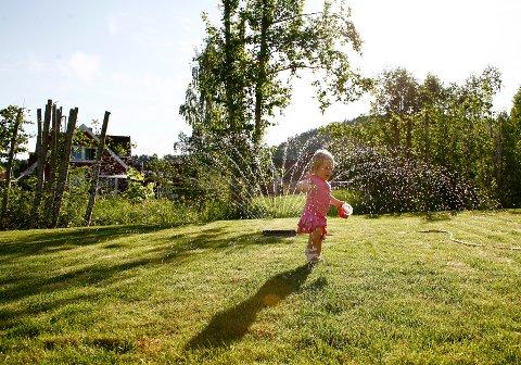 IKKE TILLATT: Vannverkene til Nes kommune har ikke kapasitet til at innbyggerne kan vanne med spreder. Foto: Sara Johannessen / SCANPIX