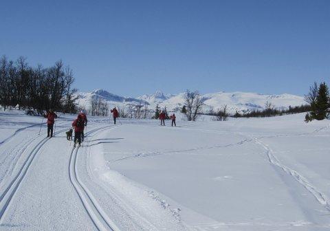Sol og ski: Kalde netter og dag etter dag med sol frå skyfri himmel ga stor utfart og herleg føre både i flotte løyper og på vide vidder.