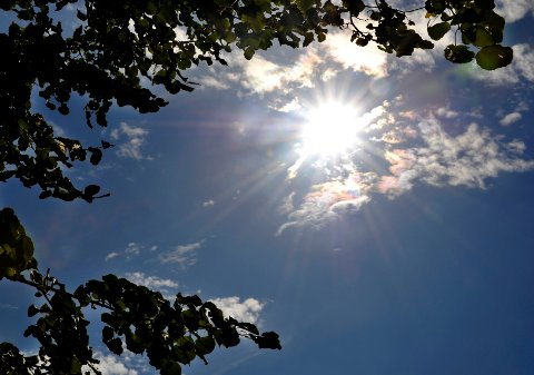 Godvær. Det blir sol og blå himmel over Fredrikstad de nærmeste dagene.