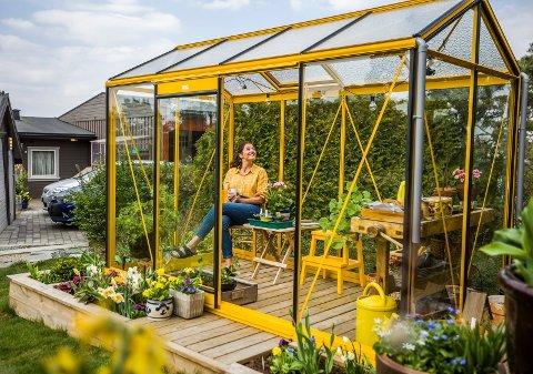 """Favorittsted: - Jeg har lenge ønsket meg et drivhus, og når jeg så dette i gult, måtte det bli det, smiler Heidi Sivertzen-Oksmo, programleder i NRK-serien """"Hagen min""""."""