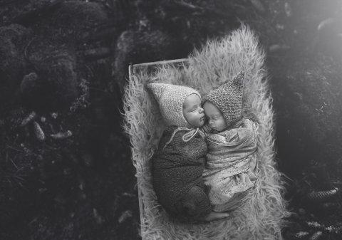 BRONSE: Tvillinghjerter av Anya S. Kolbjørnsen