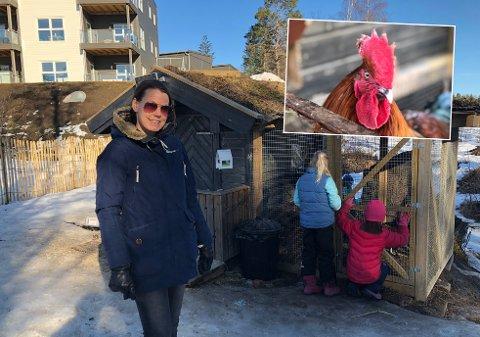GJØRTILTAK:Skolehageansvarlig Elin Daviknes lover å komme naboene i møte med tiltak for å kunne beholde de for elevene så populære hønene og hanen.