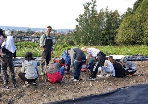 Prosjektleder: Markus Brun Hustad i Økologisk Norge  med en skoleklasse i åkeren på Tveten andelsgård.