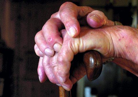 Stor gruppe: Pensjonistpartiet vil ikke godta at de ca. 900.000 pensjonistene i Norge skal ha en dårligere velstandsutvikling enn resten av befolkningen, skriver Ståle Hansen. foto: espen vinje