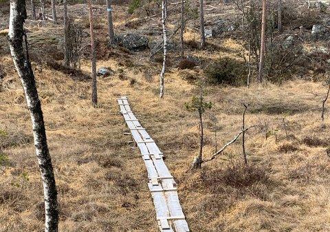 FJELLA-IDYLL: DNT Indre Østfolds søndagstur går fra Skrabberud syd og har en totallengde på fem kilometer.