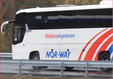 Ikkje på buss: Skal du reise med ekspressbuss, må du reise utan hund.