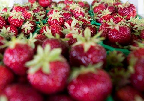 Jordbærene har nådd markedet
