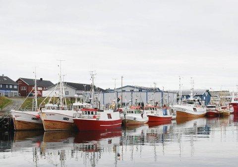 VIKTIG MELDING: 28. april kommer ventelig en viktig avgjørelse om framtidas fiskerinæring. Da behandler Stortinget kvotemeldingen.
