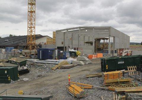 SVØMMEHALL: Den nye svømmehallen på Årnes begynner å ta form. Til venstre Neshallen.