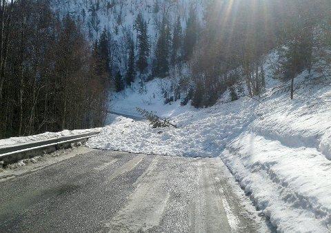 RAS: Søndag formiddag gikk det et snøskred over fylkesveg 444 på strekningen mellom Raphamn - Mysuseter. Dette er en veg som det kjører flere biler på og tilfeldigheter gjorde at det var ingen som kjørte i området da snøskredet gikk.
