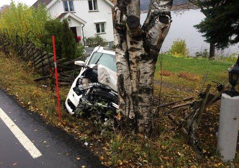 INN PÅ TUNET: Hytteeieren ved Randsfjorden ønsker ingen reprise av denne hendelsen  fra høsten 2019.
