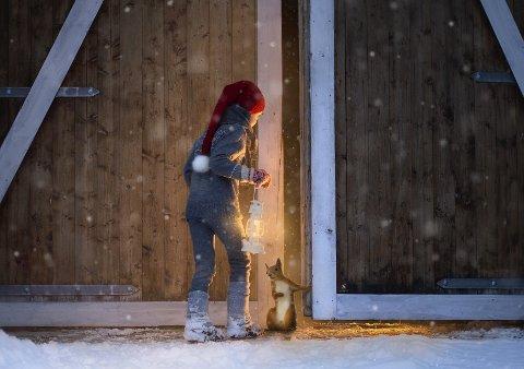 VINNERBILDET: Det ble skikkelig stemning i bildet som er tatt hjemme hos Elisabeth Sand på Ål. PS: Se vinnerbildet i fullt format under artikkelen.