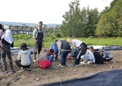 Prosjektleder Markus Brun Hustad med elever som lærer å så grønnsaker