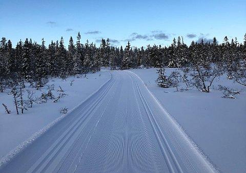 NORDÅSEN TIDLIGERE DENNE UKA: Nannestad og Bjerke løypekjørerlag la ut dette bildet av nypreparerte løyper i Nordåsen på Facebook onsdag formiddag.