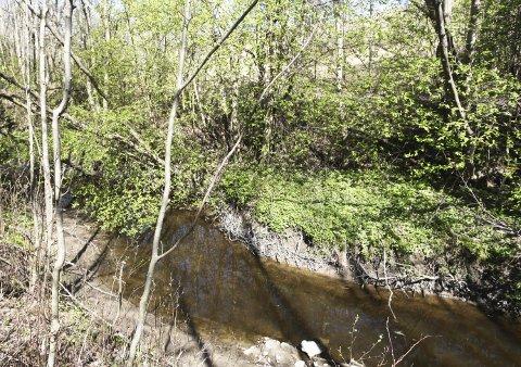 Forurenset: Utslippet fra Lindum medførte brunt vann i Leirelva. Foto: Lena Malnes