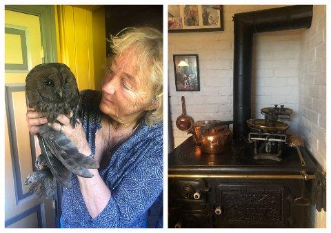 REDDET: Kattugla forvillet seg inn i piperøret til den gamle vedovnen hjemme hos Anne Burdahl på Teien gård.