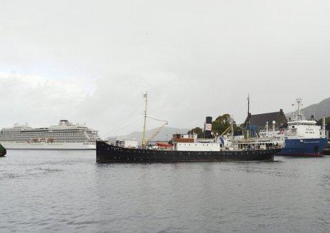 Blant supplyskip og cruiseskip-giganter dukker plutselig DS «Stord 1» opp som et levende kulturminne på sjøen. (Foto: TOM R. HJERTHOLM)