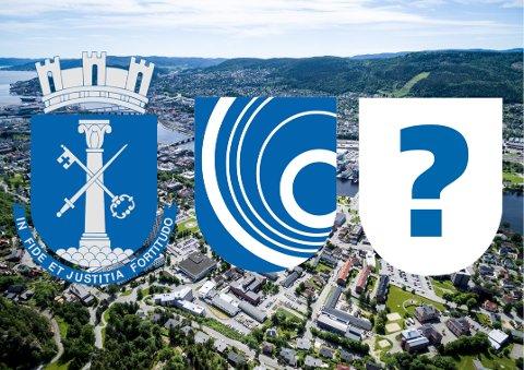 Drammens byvåpen, «Årringer» eller noe helt nytt? Det må politikerne ta stilling til på tirsdag.