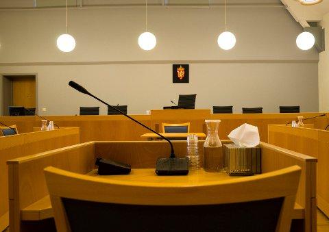 I RETTEN: I Nordre Vestfold tingrett er en hortensmann dømt for ran med motorsag.