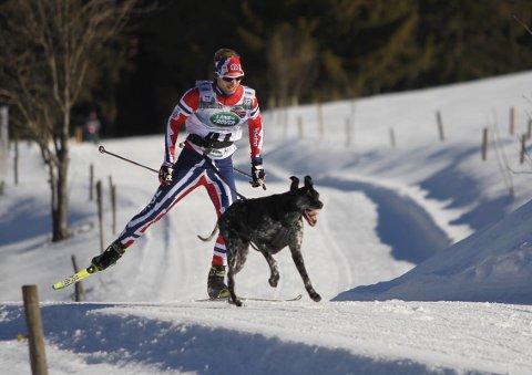 SØLV: Yngve Hoel tok en ny internasjonal medalje i VM. Arkivfoto
