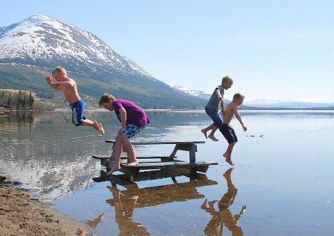 DRØMMEN: 20. mai 2013 var det 25 grader på Ømmervatn i Vefsn, og denne gjengen benyttet  sjansen  godt og tok seg et bad. (Foto: Kalle Steen)