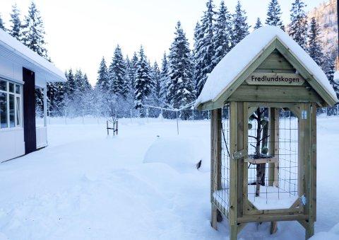 Fuglebur: Hit skal fuglene lokkes for en matbit og allmenn beskuelse. Buret er laget av HIAS i Brønnøysund.