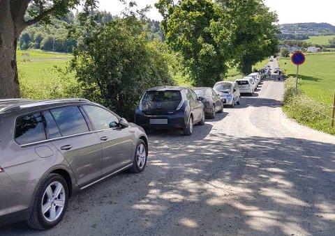 Bilene som sto parkert langs denne veien på Væresholmen fikk parkeringsbot.