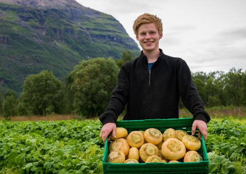 Eirik Østring er oppstartsgründer for enkeltmannsforetaket Målselv Mat. Her avbildet med en kasse neper.