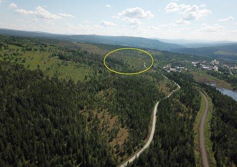 Det nye næringsområdet på Berkåk markert med gul sirkel der nye E6 vil gå et tykke utenfor dagens Berkåk sentrum som sees til høyre i bildet.