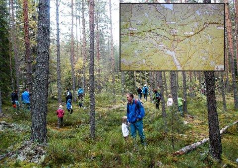 POPULÆRT OMRÅDE: Ikke bare turstien, men også skogen rundt Tinnemyra er mye brukt. Hovedbildet er tatt under et arrangement i 2010.