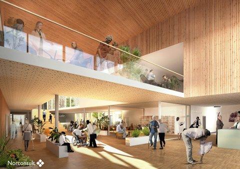 NYTT SYKEHJEM: Det planlagte sykehjemmet på Hogsnes får 120 plasser, skal åpnes i 2021 og koste en halv milliard kroner. Sykehjemmet skal erstatte Træleborg der det kan bli boomårde for mennesker med demenssykdom.