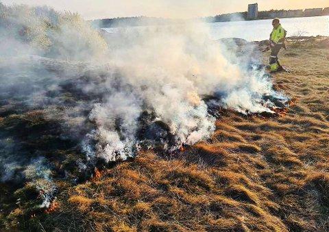 ORMØYA: I 19-tiden, lørdag, kunne det ses brannmannskaper på øya som jobbet med å slukke brannen. Brannvesenet vet ikke hvordan brannen startet, men fant et bål med glør på øya. Rundt 300 kvadratmeter ble svidd av.