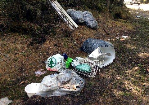 Søppel: – Jeg hadde en liten stopp ved ei avkjøring i Tonsåsvegen fredag. Synet som møtte meg var dette. Lite trivelig!