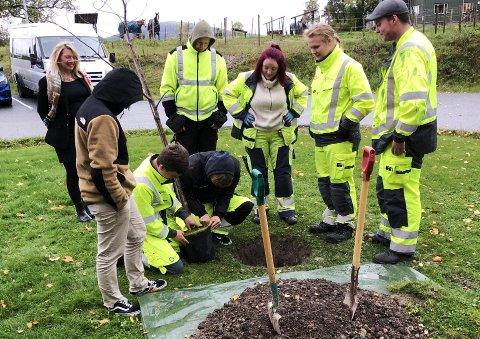 PLANTING: Årets anleggsgartnerelever planter et tre som symbol på videre vekst av avtalen. Elever skal også drive skjøtsel på dette treet fremover.