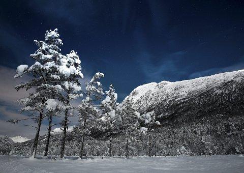 Det er muligheter for snø i jula i vårt fylke, som her i Virumdalen. Foto: Tommy Rustad.