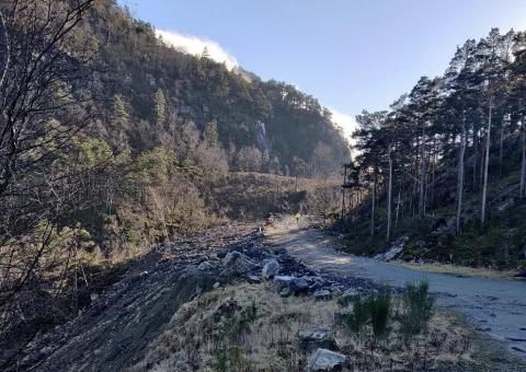 STORT INNGREP: En skogsvei ble gjort om til bilvei med en stor fylling. Nå søkes utbygger om dispensasjon og godkjenning etter at jobben er gjort.