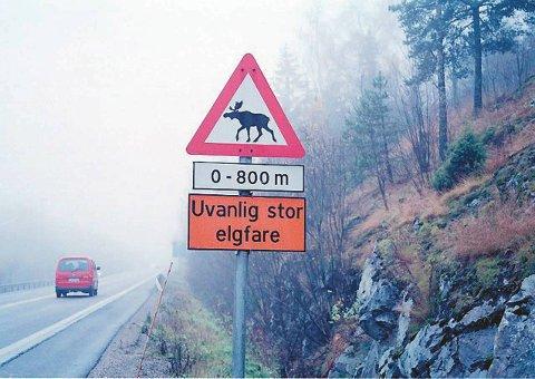 ADVARSEL: Skiltene ser du mange steder langs norske veier. Nå er det høysesong for viltpåkjørsler, og ekstra grunn til å være obs.