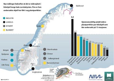 Det ble funnet mikroplast i minst ett blåskjell ved alle de 13 målestasjonene langs norskekysten. Skjell ved Skallneset i Finnmark hadde i gjennomsnitt fått i seg mest plast. Kart: Nyhetsgrafikk.