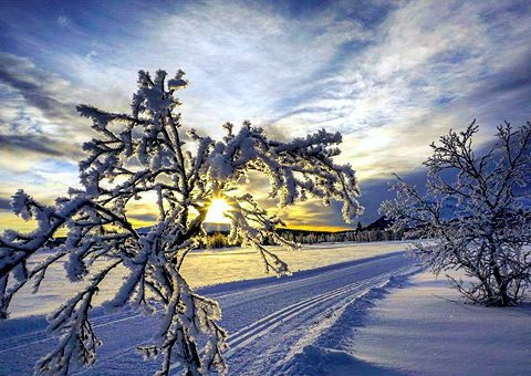 7. VINTERVAKKERT: Venabygdsfjellet i sol. Foto: Jorunn Nygaard