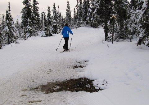 SNØFATTIG: Vinteren 2020 har så langt vært en snøfattig affære. Det har gitt utslag på Birken-tallene, men arrangøren håper å ta igjen det tapte inn mot rennstart. Foto: Berit Keilen / NTB scanpix
