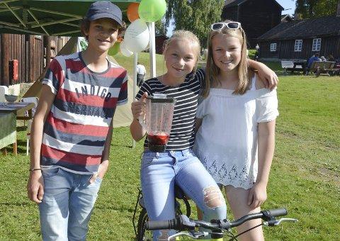 TINGELSTAD 4H: Ådne Rolstad (16), Tuva Lynne Mathisen (11) og Eline Marie Alm (12) i Tingelstad 4H tilbød folk å teste smoothiesykkel.