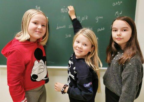 DIALEKTORD: Linnea Wien Sørbråten (fra venstre), Emma Helene Werner og Selma Lien Mellem synes det var spennende å jobbe med hadelandsdialekten.