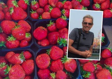 For Odd Niklas Haugrønning (innfelt) ligger det ikke an til en god jordbærsesong