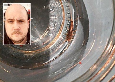 FLERE RINGER: Alexander Jensen hos Rentokil skadedyrsbekjempelse har hendene fulle med å kartlegge skjeggkre i privatboliger i Tromsø og Harstad.