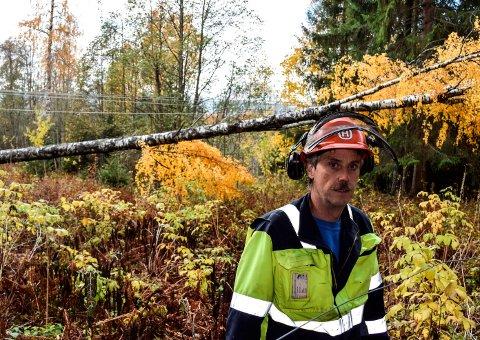 TREFALL: 91 hustander i Snertingdal er uten strøm etter trefall over strømlinje. Bildet er fra en lignende situasjon i fjor nord for Hov.