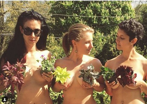 Når du trimmer hekken, kan du vel også stusse busken i anledning World Naked Gardening Day. Bildet er fra Instagram-kontoen naked.in.nature med bildeteksten: Man, those are some nice flowers, agreed?