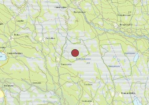 Ulven ble felt ved Kjerkeholtjernet i Endelausmyrene.