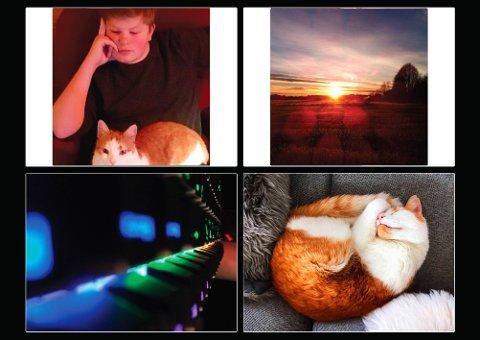ORANSJE: –  Alle bildene har oransje som nøkkelfarge, forklarer Erik Alexander Hjelvik.