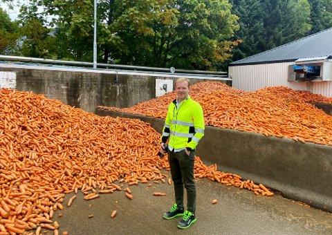 JOBBER DØGNET RUNDT: Råvaresjef på Findus, Hans Gunnar Gravningen, forteller at det er fullt trykk på fabrikken når alle rotgrønnsakene skal høstes.
